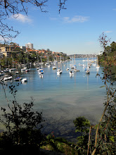 Photo: Mosman Bay for our Cremorne Point Harbour walk.