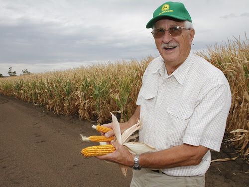 ack Warnock with two styles of corn grown on the family's farm - grit corn, the larger cobs - and popcorn, left.