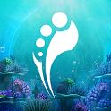Beyond Wonderland SoCal 2017 icon