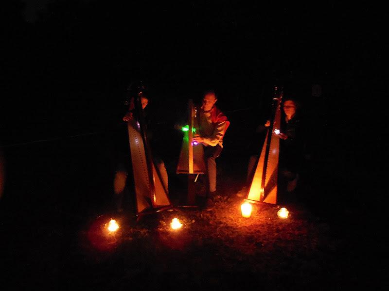 Arpe elfiche nella notte di Giò Volpi