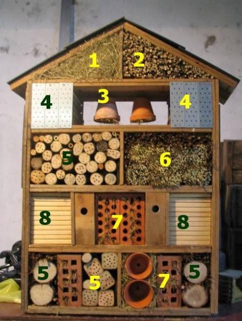 hotel_insectes_numeros_cs_bd-57bbc.jpg