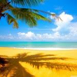 4 lugares aptos para niños en Quintana Roo