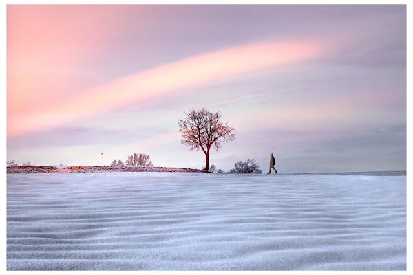 a little winter tale di Daniela Ghezzi