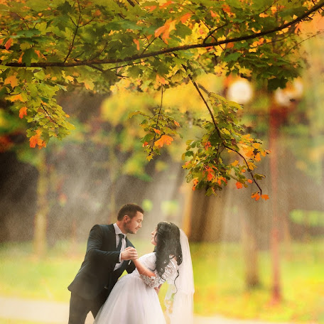 Wedding photographer Dmitriy Korol (ICor). Photo of 21.12.2017