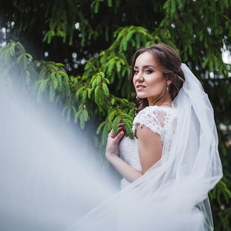 Wedding photographer Olga Shevchenko (BEZMATA). Photo of 26.12.2017