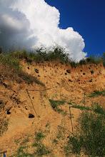 Photo: A késő-miocén (pannon) ősmaradványok klasszikus lelőhelye: Pécs-Nagyárpád (egykori községi homokbánya)