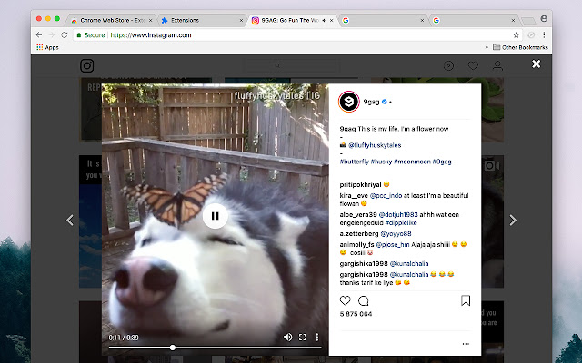 Video Progress Bar & Controls for Instagram™