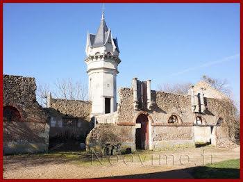 propriété à Château-la-Vallière (37)