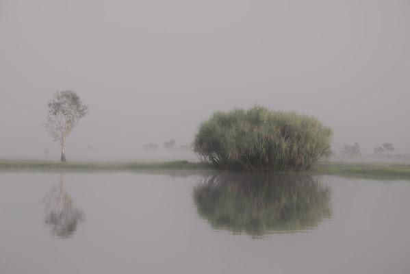 Lungo il fiume. di Sognatrice