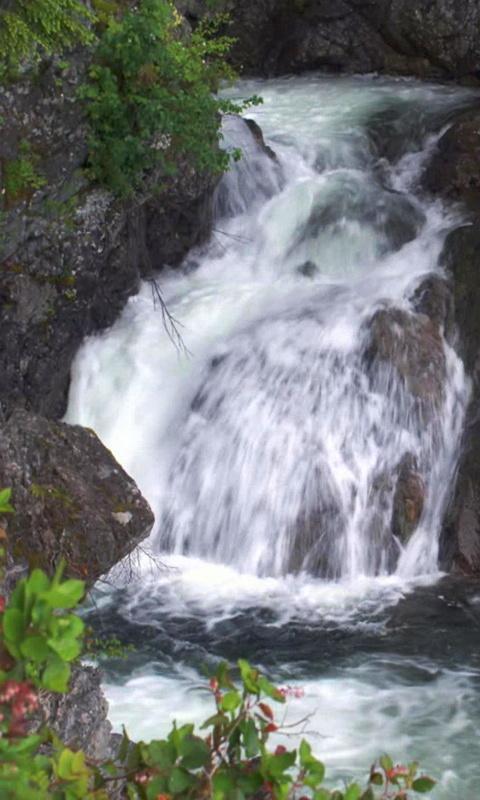 Скриншот Красивый лесной водопад