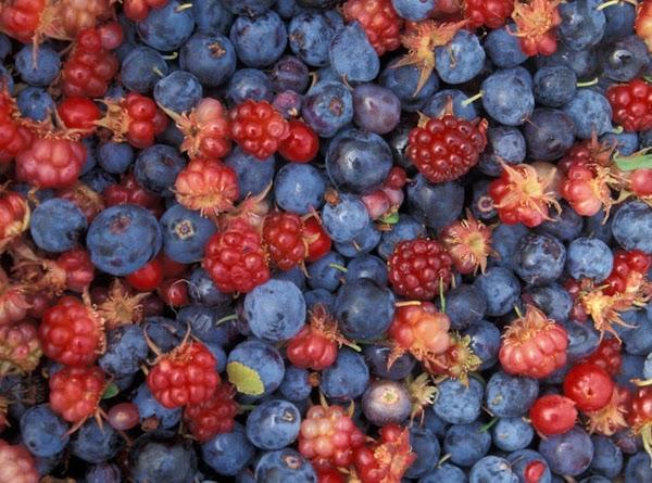 Mixed Berry Cream Parfaits Recipe