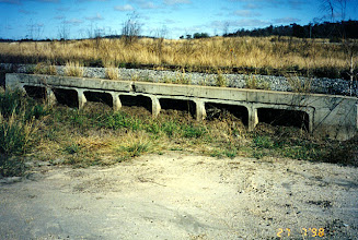 Photo: AUS-HYDR06 - Australia this large culvert is now protected by vetiver