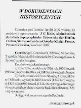 """Photo: """"Znak Pokoju"""" nr 120, lipiec-sierpień 2010, s. 17"""