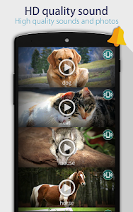 Animals: Ringtones screenshot 2
