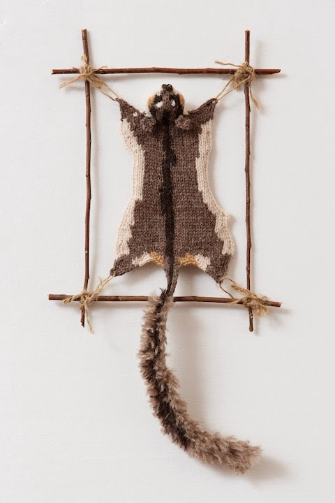 "Photo: LEADBEATER POSSUM #1  2013 15"" X 4"" (38CM X 10CM) YARN, STRING, STICKS INTERPRETATION FROM SPECIMEN AT MELBOURNE MUSEUM: SEX-F.  COLLECTED - COCKATOO SWAMP, YELLING FAUNA RESERVE, V.THOMAS, AUGUST 17TH, 1989. (C) Ruth Marshall, 2013"