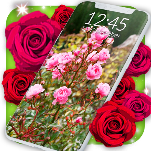 Roses Live Wallpaper Apps On Google Play