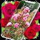Roses Live Wallpaper (app)