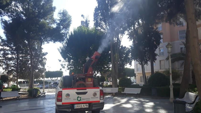 Desarrollo de los trabajos en Adra.