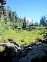 Photo: Mt. Rainier from Eunice Lake