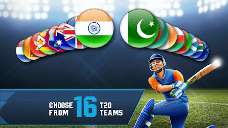 Cricket T20-Multiplayer Game 1.0.80 screenshot 2089441