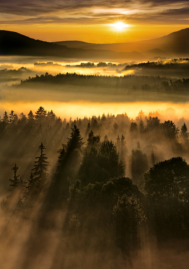 National Park Czech Switzerland by Evžen Takač - Landscapes Sunsets & Sunrises ( dramatic landscapes, inversion, mountains, fog, czech republic, forest, czech switzerland national park, sunrise, czech switzerland · fog · inversion. · czech republic · trees · forest delete sunrise · sun · fields ·, sun )
