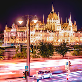Hungarian Parliament by Mo Kazemi - Buildings & Architecture Public & Historical ( budapest hungary, neon, night, parliament, neon glow, night shot, hungary, neon lights, hungarian parliament, nightscape, budapest, night scene, nightscapes, night photography )
