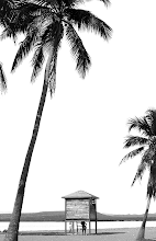 Photo: Me hizo gracia la mujer debajo de la casita. Como que hace juego con las palmeras...