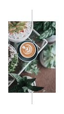 Coffee & Succulents - Facebook Story item
