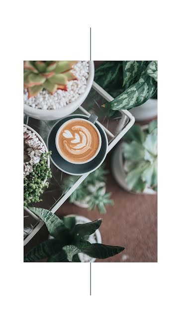 Coffee & Succulents - Facebook Story Template
