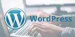 Hire WordPress Managed Service