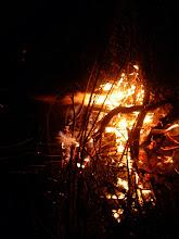 Photo: Taki był ogieniek z przywiezionego drzewa
