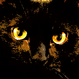 orange eyes by Edward Gold - Digital Art Animals ( orange, black, eyes, digital art,  )