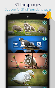 Animals: Ringtones screenshot 3
