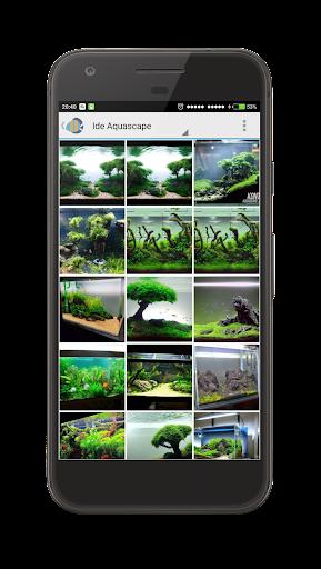 8300 Koleksi Foto Ide Desain Aquascape HD Unduh Gratis