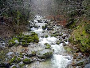 Photo: Brandy Creek