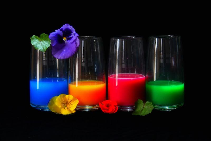 United colors di Delia-B