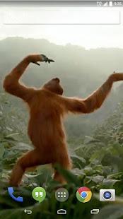 Wild Dance Crazy Monkey LWP 2