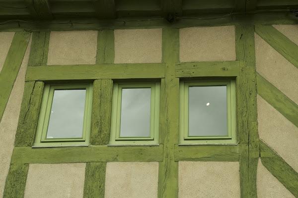 Green Lines di Eliiii