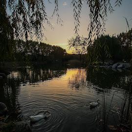 by Ilker Pala - City,  Street & Park  City Parks