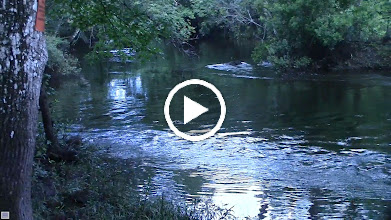 Video: Lot of water flowing into the area with all the June rains.
