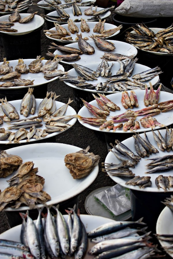 BULAD (dried or salted fish) by Harold Cruz - Food & Drink Plated Food