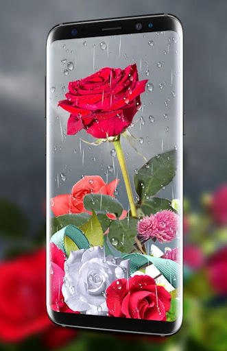 Rose Live Wallpaper 2018 with Waterdrops 1.4 screenshots 2