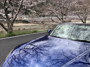 S2000 AP1 のカスタム事例画像 CAMAROの住人さんの2020年03月29日17:02の投稿