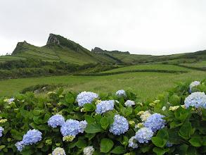 Photo: Азорский пейзаж./Azorean landscape