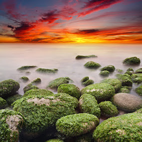Till the end by Jorge Maia - Landscapes Sunsets & Sunrises ( water, sunset, green, seascape, rocks )