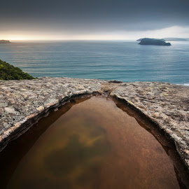 View by Geoffrey Wols - Landscapes Waterscapes ( puddle, sunrise, rocks, central coast, beach, sunset, lion island, water,  )