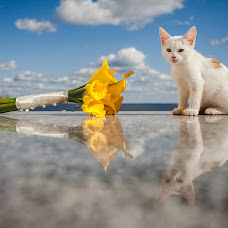 Wedding photographer Ivan Vorozhcov (IVANPM). Photo of 01.09.2014