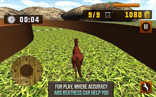 My Own Horse 3D