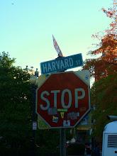 Photo: Harvard Street in Harvard.