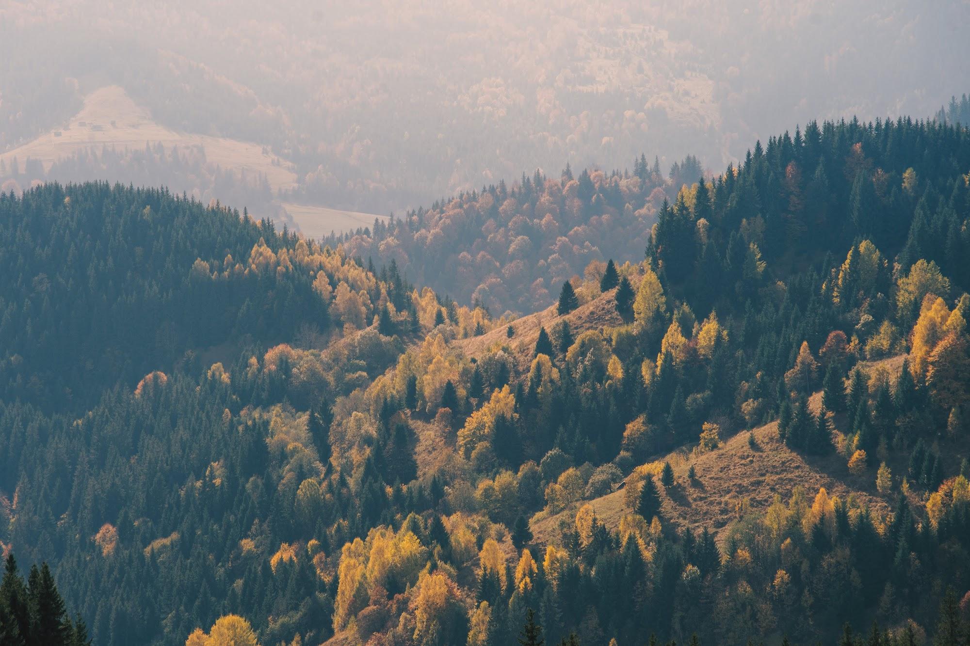 Осінні схили гір